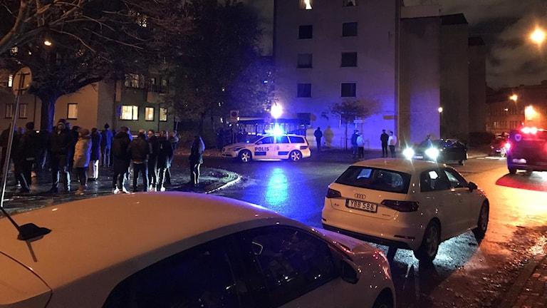 Polisbilar med blåljus
