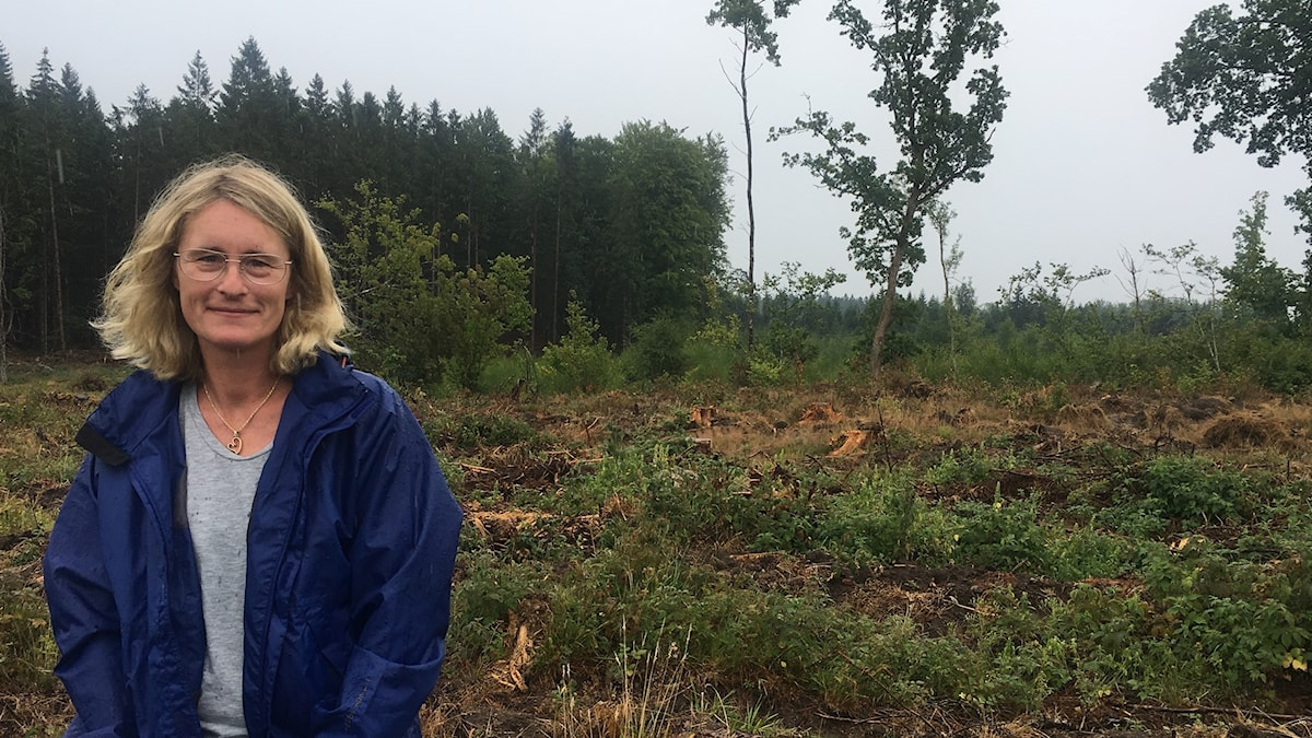 Katarina Brunnström äger 600 hektar med skog utanför Osby.
