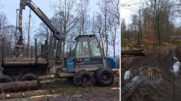 Skogsmaskin och skogsväg