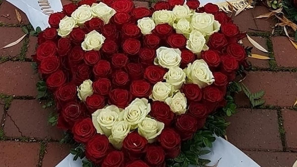 Rosorna i hjärta.