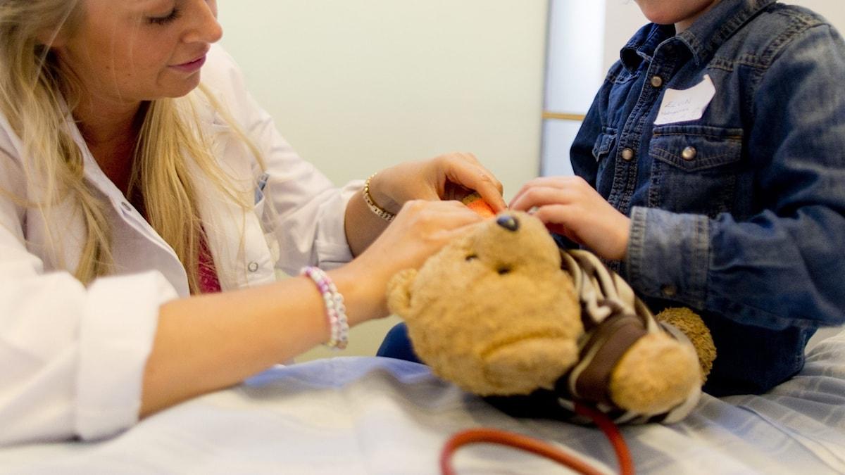 En nalle blir undersökt av läkare.