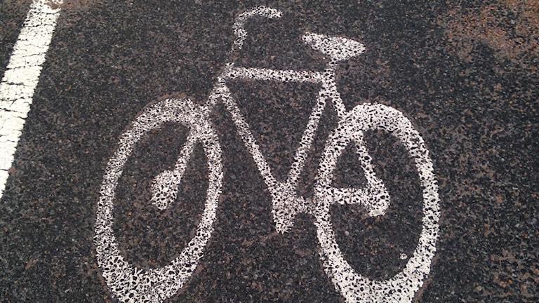 Cykelväg Vinslöv