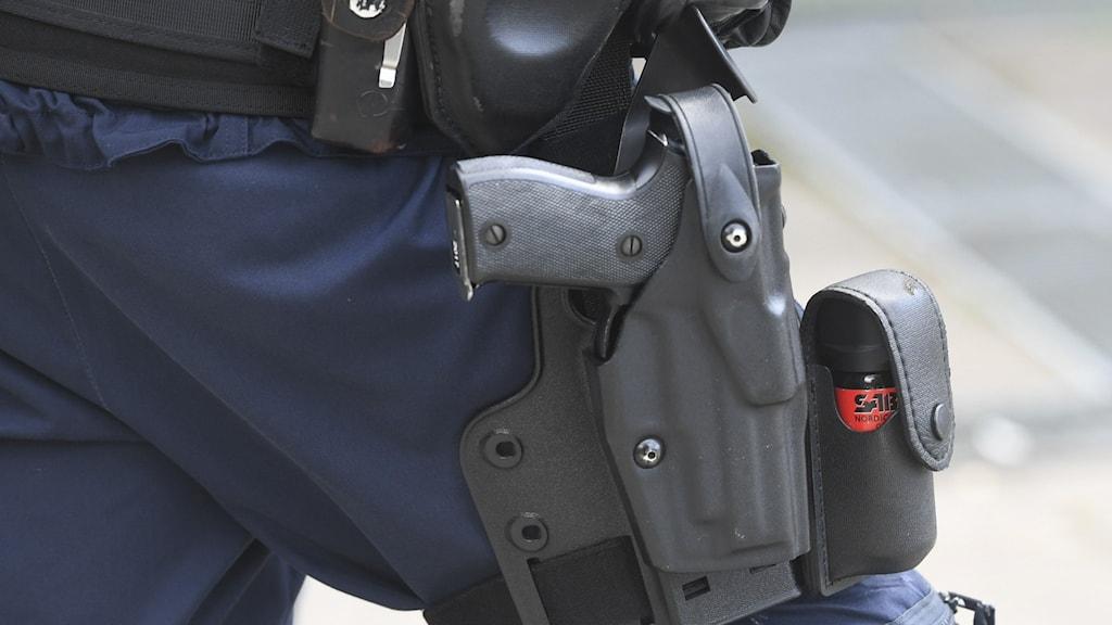 polisvapen.