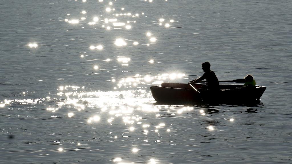Båt i soligt vatten.