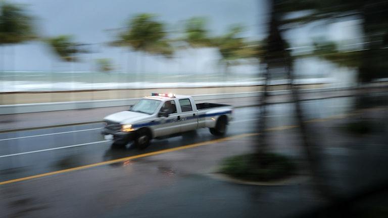 En polisbil kör längs strandpromenaden i Fort Lauderdale i Florida inför orkanen Irmas ankomst. Foto: Chip Somodevilla/TT