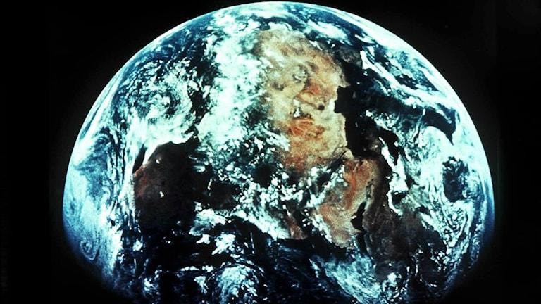 Den genomsnittliga svensken lever som om det fanns 4,2 jordklot visar Världsnaturfondens (WWF) Living planet-rapport.