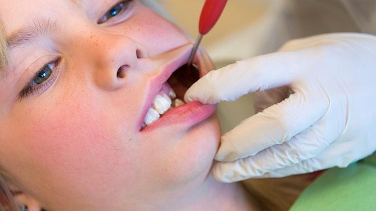 Barn som undersöks av tandläkare.