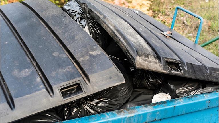 Laholms kommun vill inte ta hand om Båstads sopor.