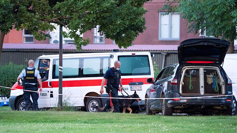 två danska poliser och en polishund går, i bakgrund finns en minibuss och bil.