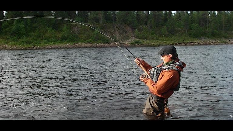 Jesper Larsson, kalastusopas