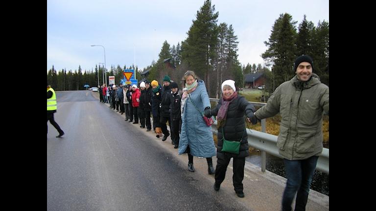 Manifestation i Kolari