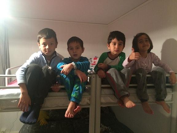Efter nästan tre månader på flykt kom de afganska barnen till Junosuando. Foto: Bertil Isaksson/ Sveriges Radio