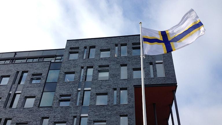 Ruotsinsuomalaisten lippu. Foto: A-L Hirvonen Nyström/SR Sisuradio