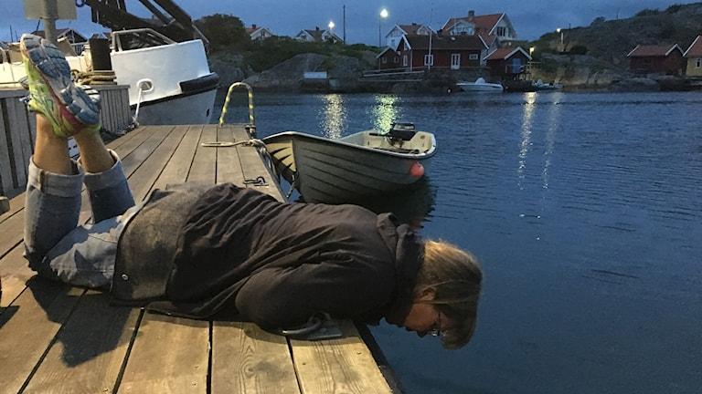Kvinna ligger på mage på brygga och kikar ner i vattnet i kvällningen