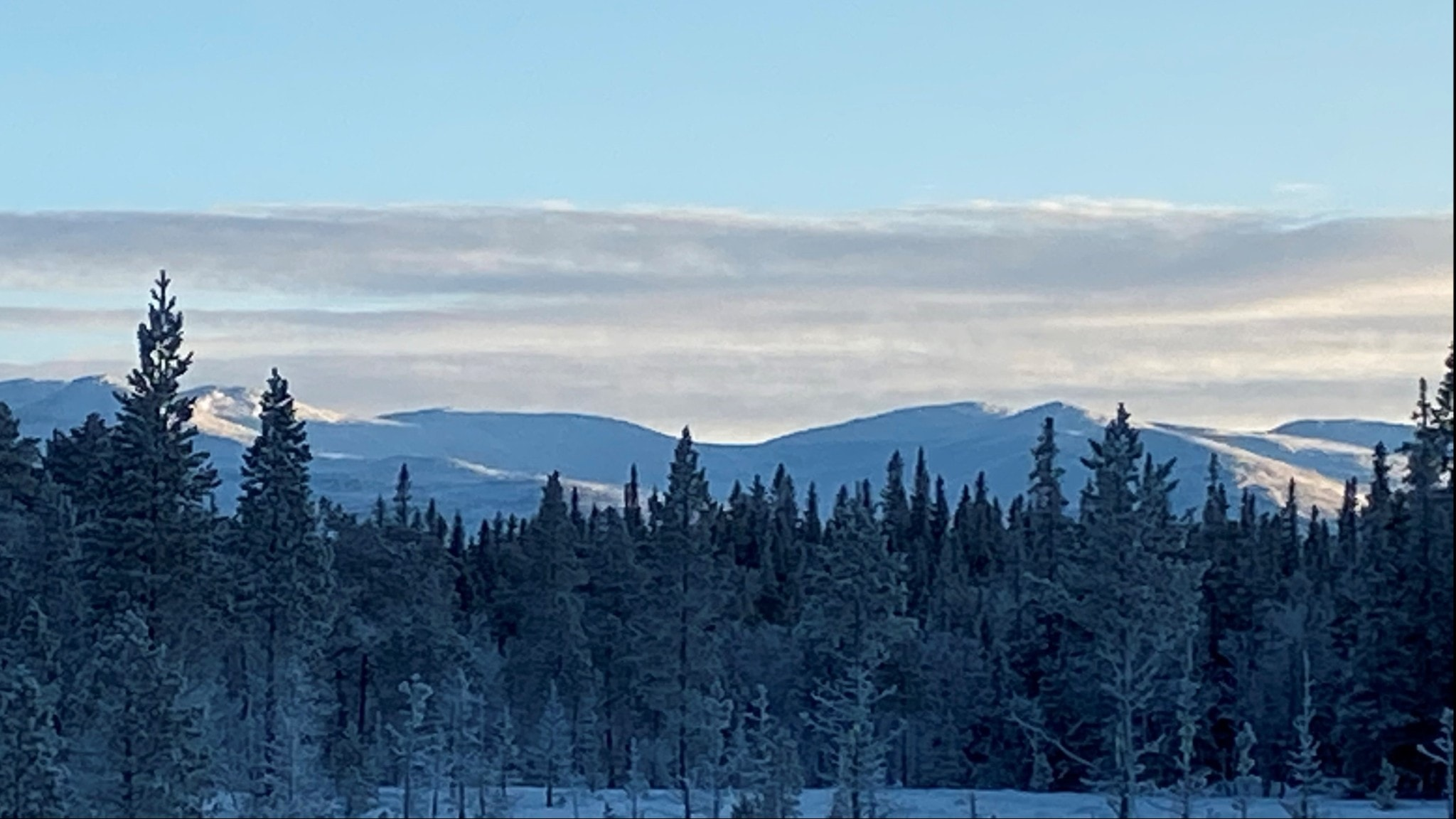 fjäll i eftermiddagssol med snö på, och skog i förgrunden