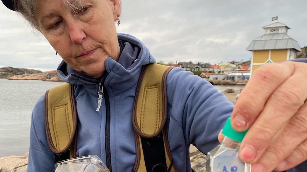 kvinna håller upp flaska med grön vätska, i hamn