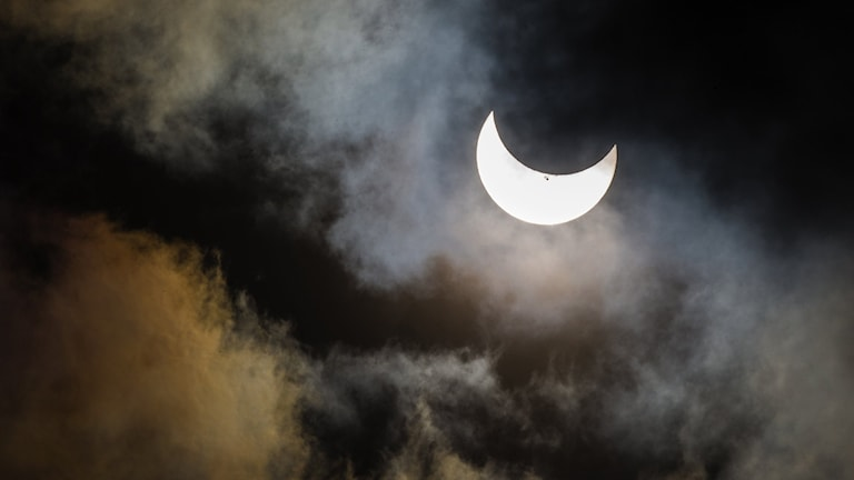 Solförmörkelse Seattle Foto LINDSEY WASSON The Seattle Times bildnummer ta01ef59