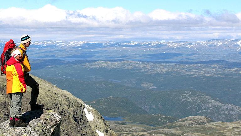 Utsikt från Presteholtet. Foto: Benny Eriksson.