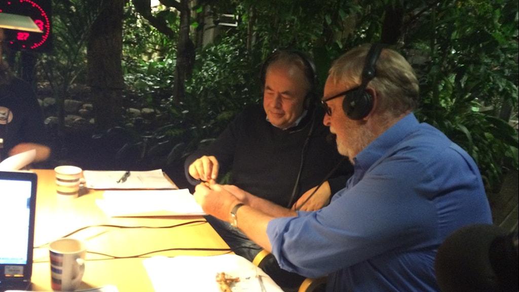 Mikael Sörensson och Lennart Engstrand tittar på gurkmeja. Foto: Helena Söderlundh/Sveriges Radio.