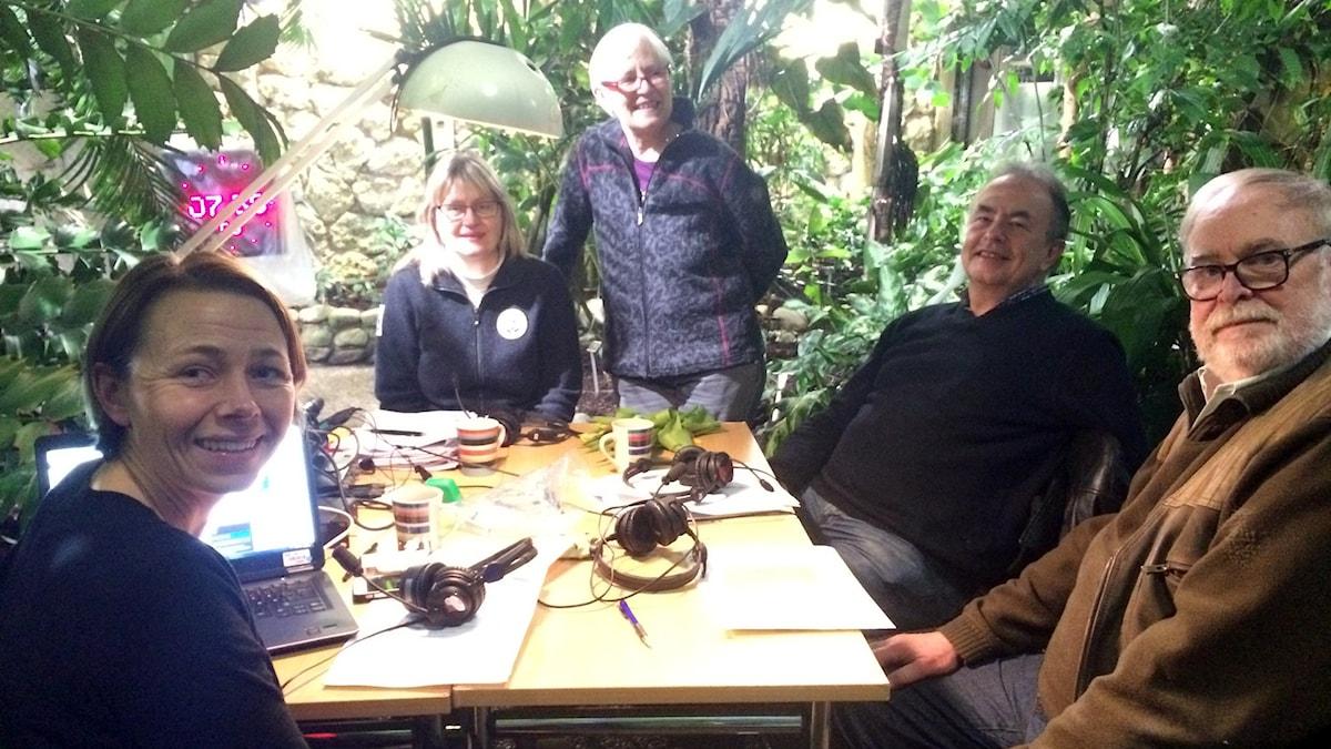 Bild på Jenny Berntson Djurvall, Susanne Åkesson, Marie Widén, Mikael Sörensson och Lennart Engstrand runt ett bord under kakaoträdet i det tropiska växthuset i Lunds universitets botaniska trädgård.