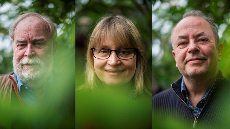 Lennart Engstrand, Susanne Åkesson och Mikael Sörensson i Naturpanelen.