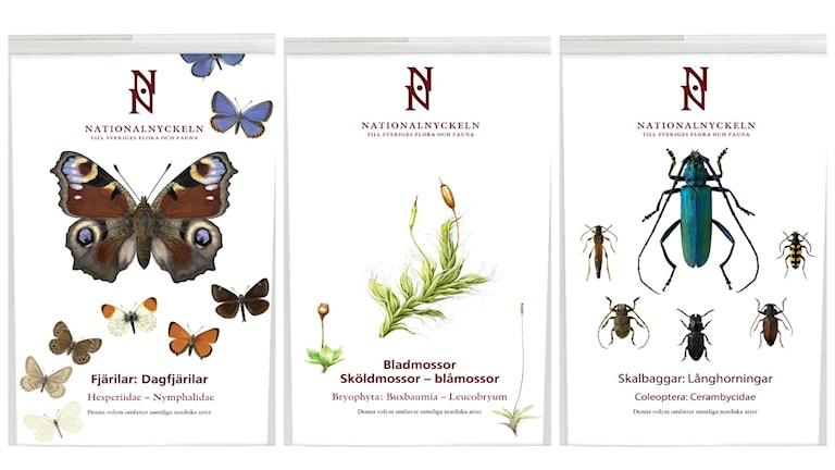 Tre volymer av Nationalnyckeln.