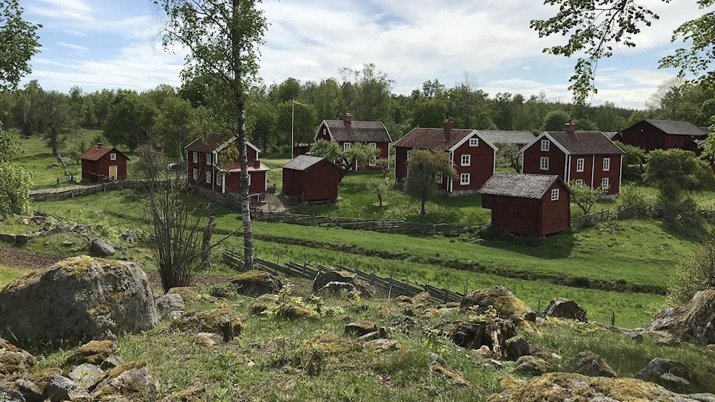 Stenig hage, röda hus med vita knutar ligger ganska tätt.