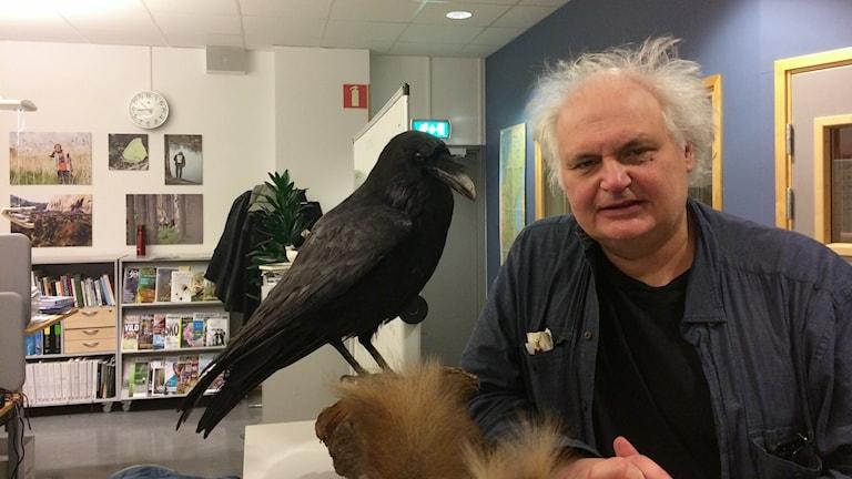 Göran Greider på Naturmorgons redaktion.