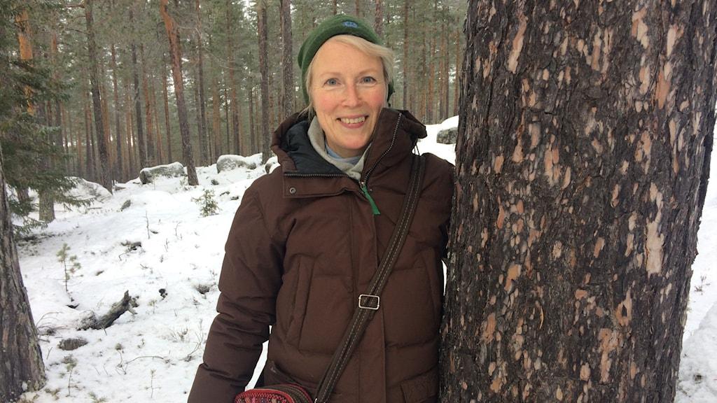 Kvinna vid tallstam i vinterskog