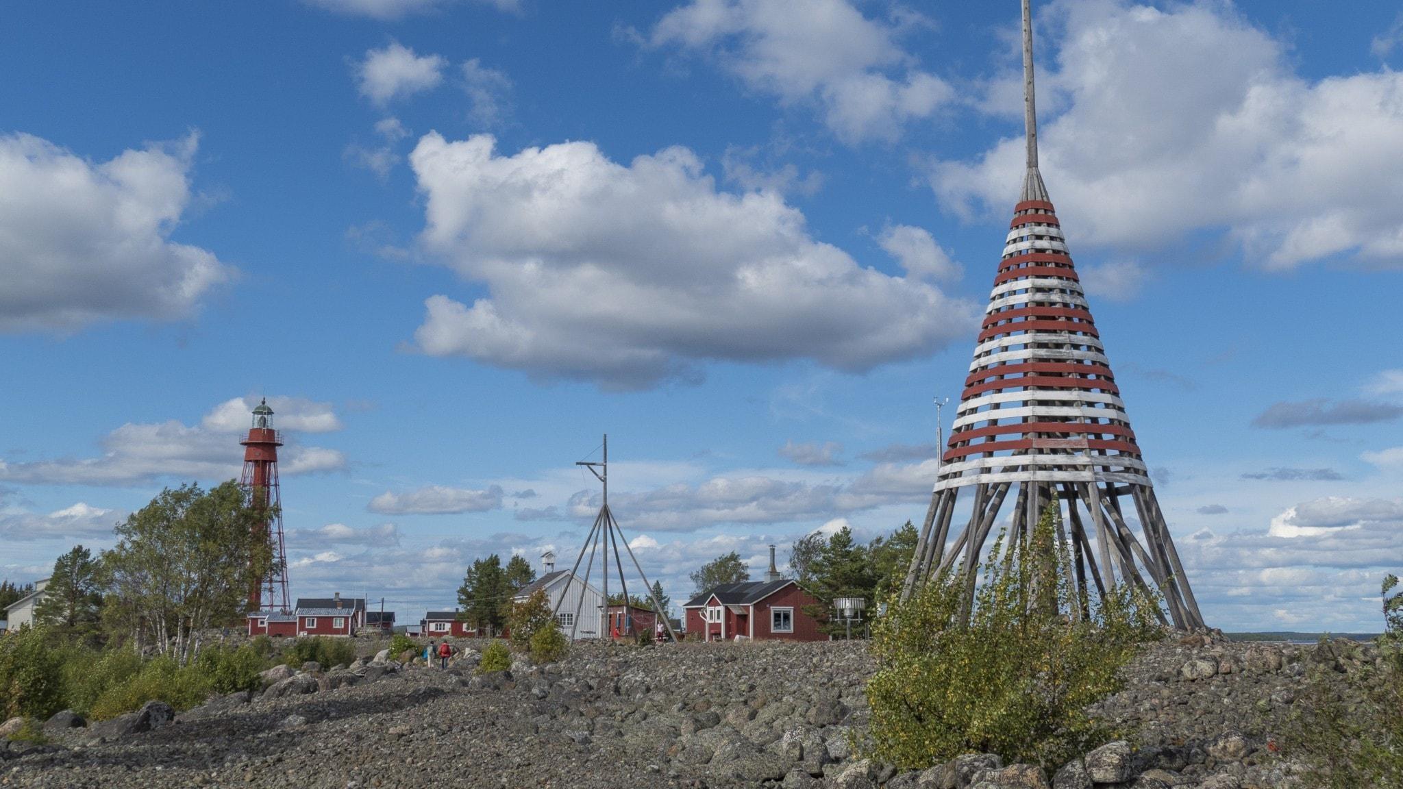 Flyttfågelmorgon på Pite Rönnskär och ljusare tider för humlepälsbiet