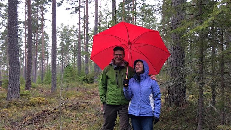 Leif och Cecilia Öster i sin hyggesfria skog i Dalarna.