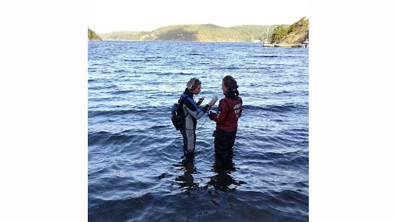 Therese Forsberg och Grethe Hillersøy hittade mycket spännande i ålgräsängarna vid Vindön på norra Orust.