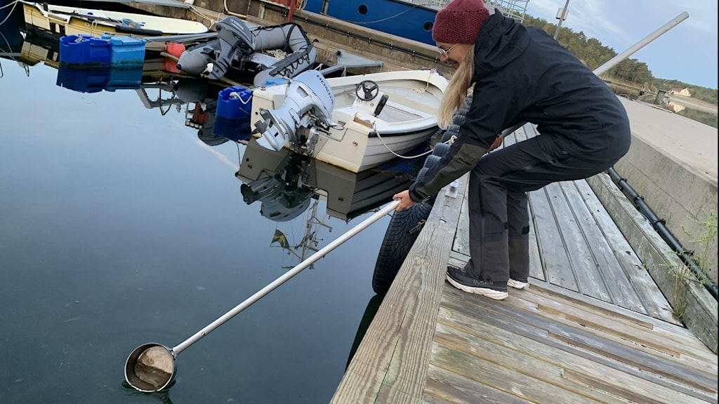 kvinna sticker ner kastrull på pinne i vattnet från brygga
