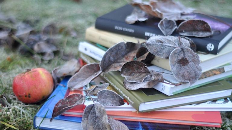 Böcker med frostiga löv på.