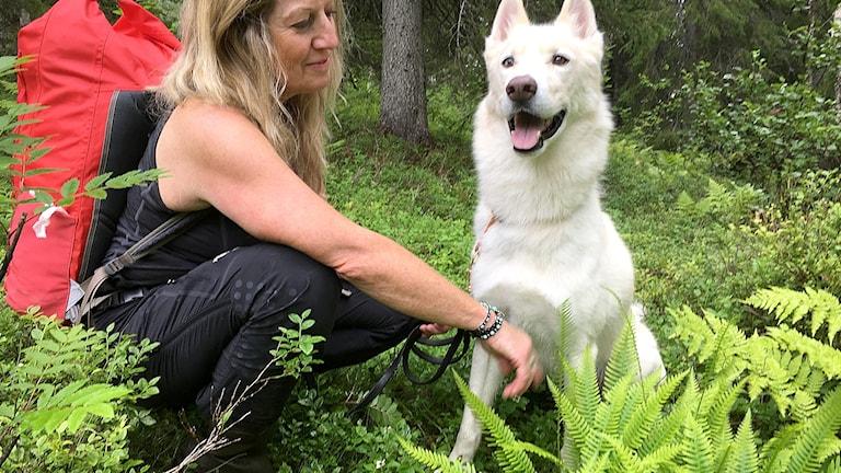 Fjällekolog Lisa Öberg tillsammans med hunden Rasmus - och kambräken till höger i bild.