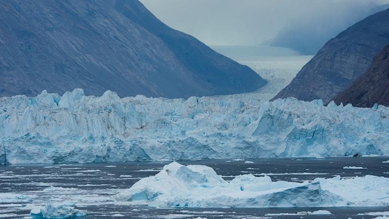 Inlandsisen glider ut i havet och bildar isberg.