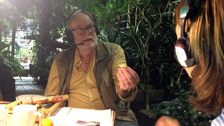 Botanist Lennart Engstrand med en teblomma i handen.