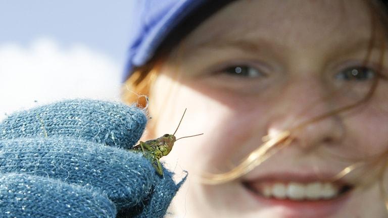 En leende flicka håller fram en gräshoppa mot kameran.