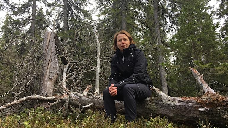 Kvinna i svarta friluftskläder sitter på en död, silvergrå stock i skogen