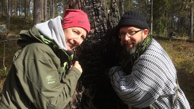 Maria Viklands och Andreas Garpebring kollar på kolflarnlavar.