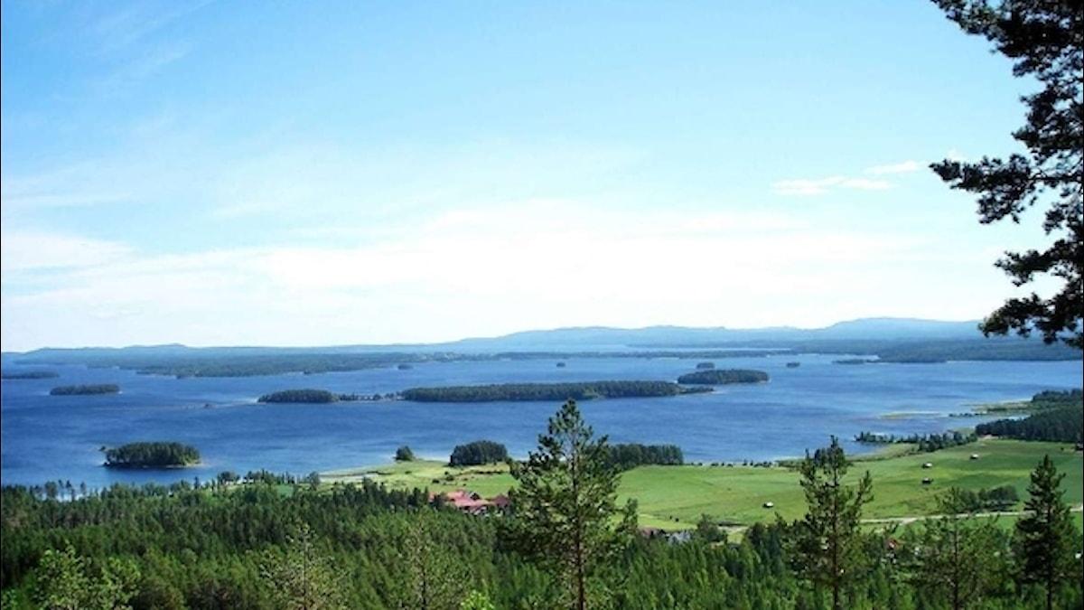 Här från Avholmsberget med utsikt över Norrdellen sänder vi Naturmorgon på lördag 3 juni.