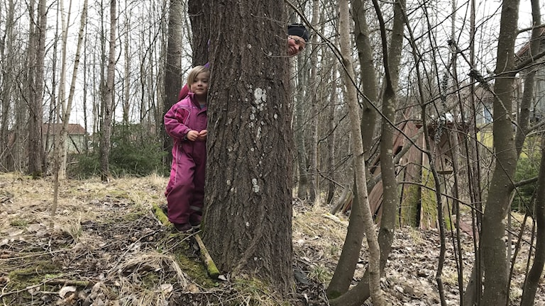 Ett litet barn och en vuxen kvinna kikar fram bakom ett träd.