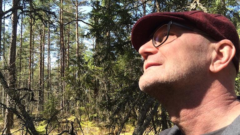 Åke Bergqvist på plats i tallmossen.