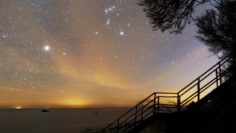 Orion och stjärnhimlen från Mön som är Nordens första Dark sky park.