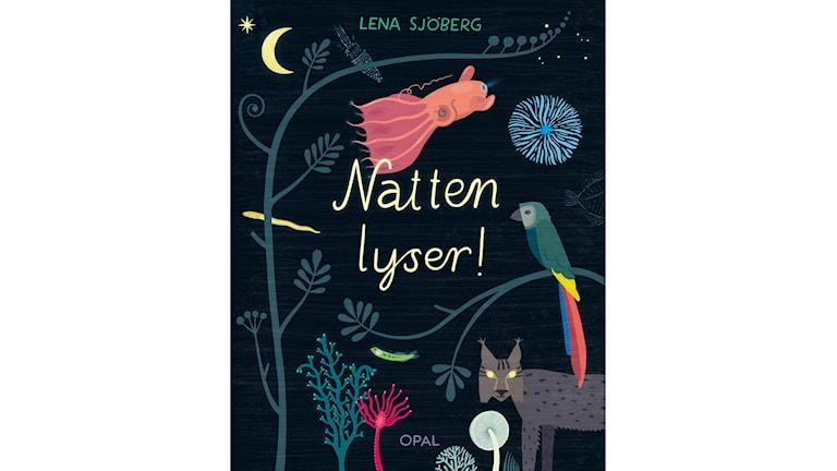 Natten lyser bokomslag av Lena Sjöberg