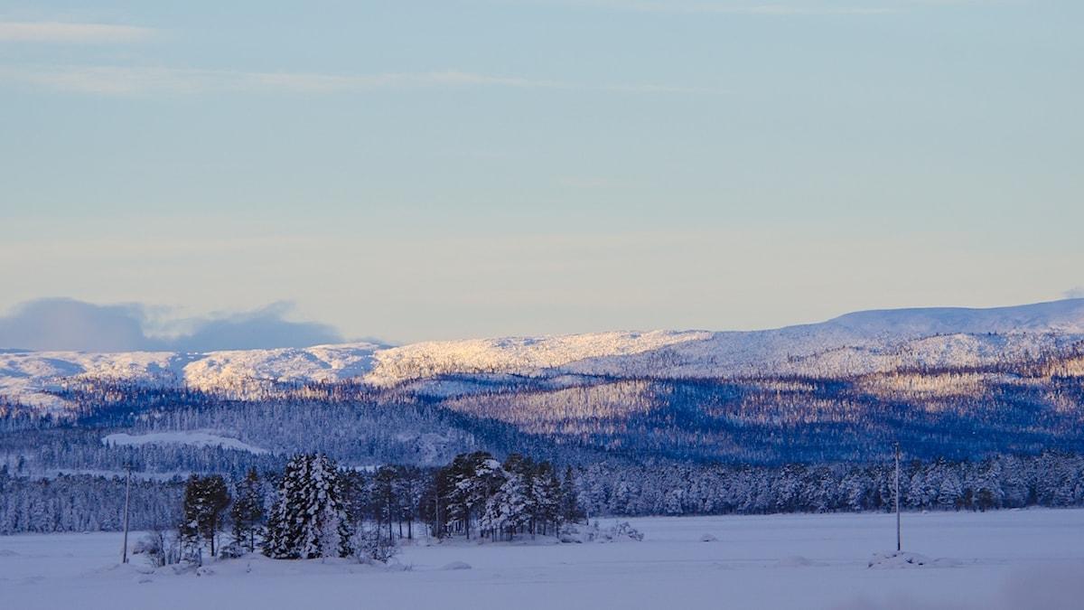 Vad formade vårt naturintresse? En av frågorna Thomas Öberg cirklar kring denna morgon från sjön Uddjaur utanför Arjeplog.