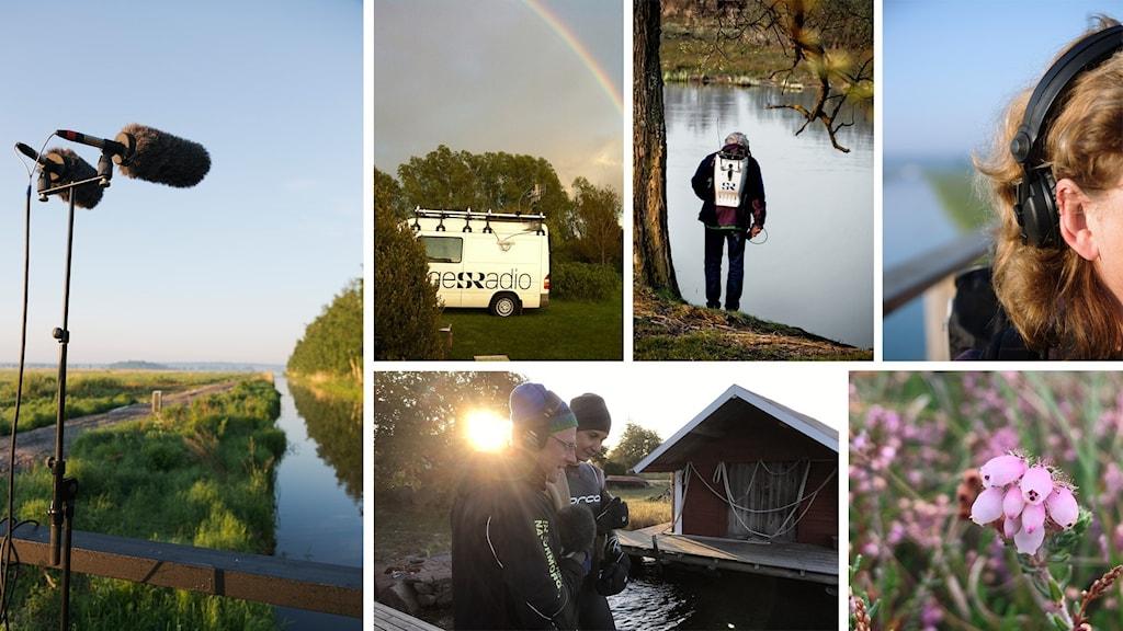 collage med flera bilder från radiosändning utomhus