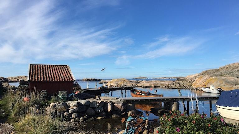 Bryggor och sjöbod vid Tjurpannans naturreservat utanför Grebbestad.