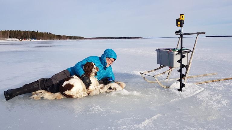 Man med hund på isen, pimplar