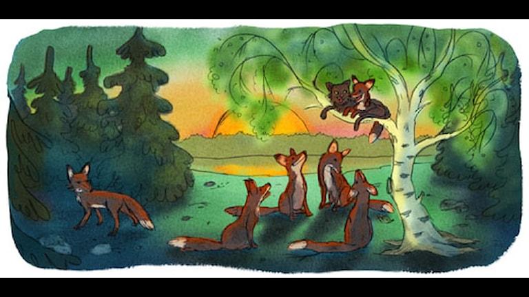 Taikalipas: Mestarikissa. Illustr. Ingrid Flygare